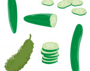 Fresh Cucumber Vector Photoshop brush