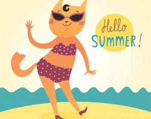 Hello Summer vector card with funny cat Photoshop brush