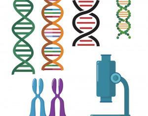 DNA double helix scientific vector set Photoshop brush
