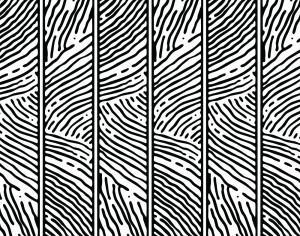 Hand Drawn Lined Pattern Photoshop brush