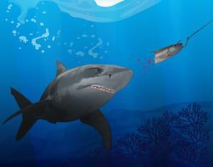 hunting shark Photoshop brush