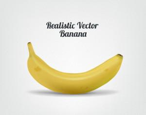 Realistic Vector Banana Photoshop brush