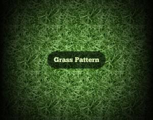 Vector Grass Pattern Photoshop brush
