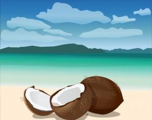 Coconuts Photoshop brush