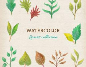 Watercolor leaves collection Photoshop brush