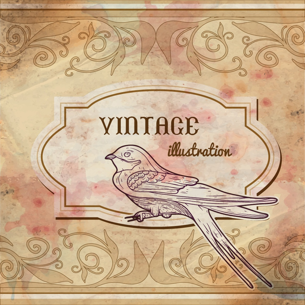 Vintage watercolor frame with swallow Photoshop brush
