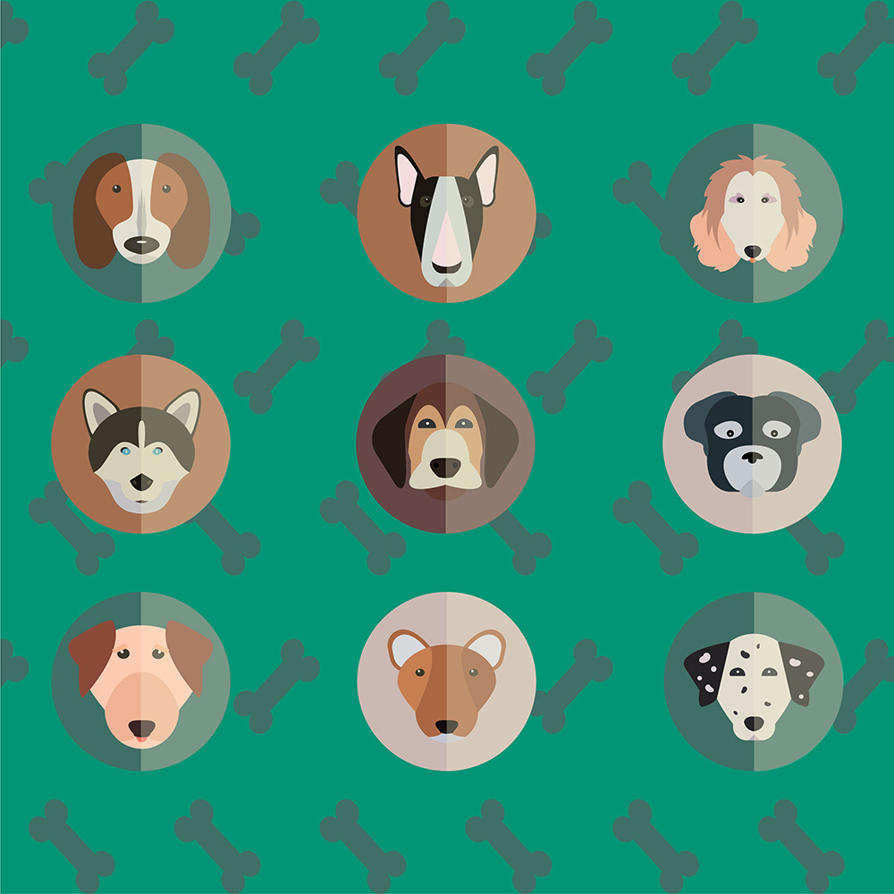 Vector illustration of cute dogs head set for free vector design Photoshop brush