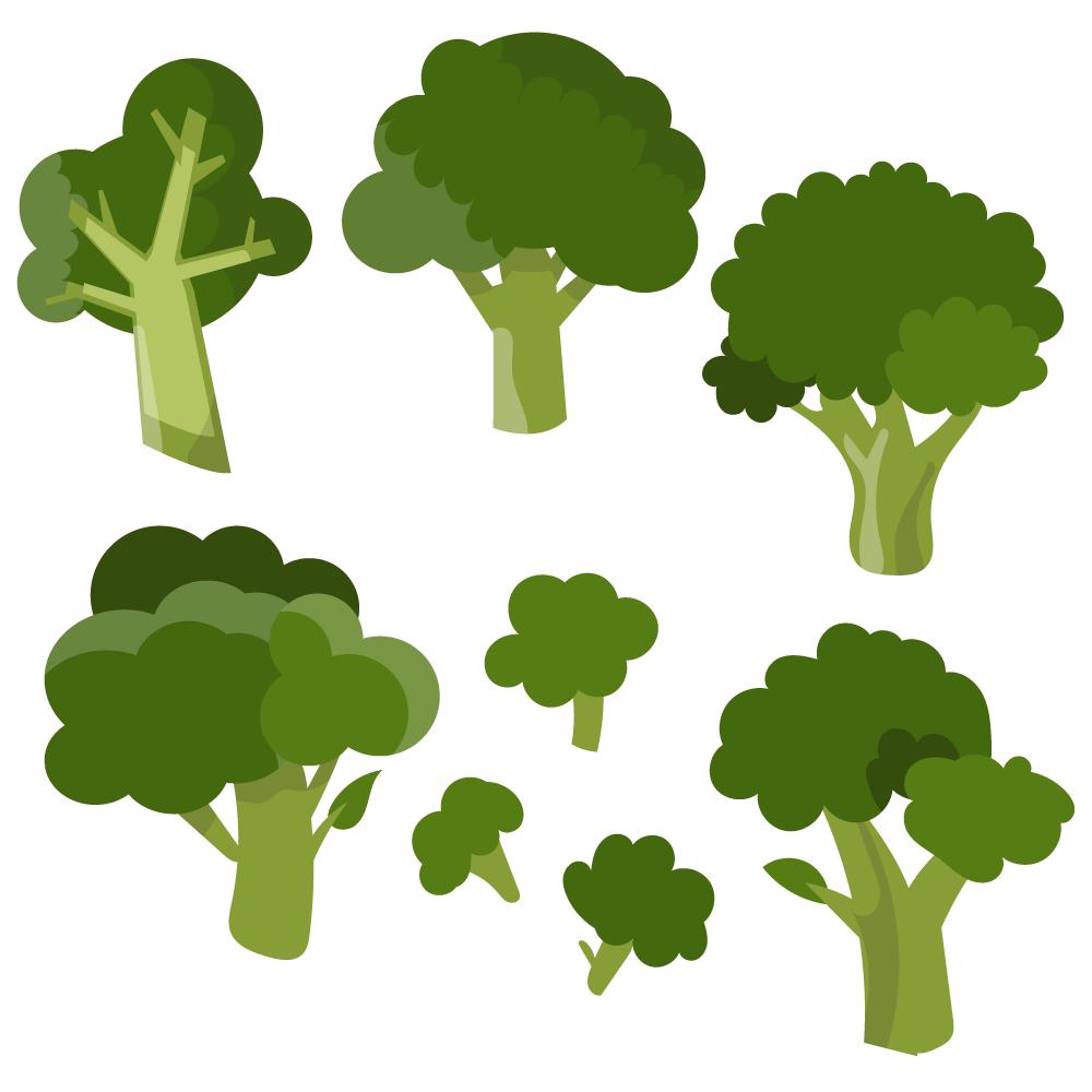 Fresh broccoli vector set Photoshop brush