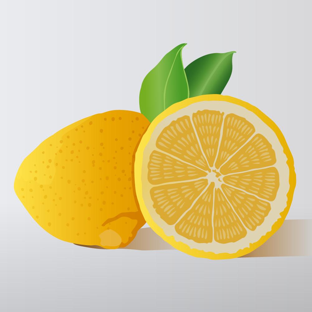 citron Photoshop brush